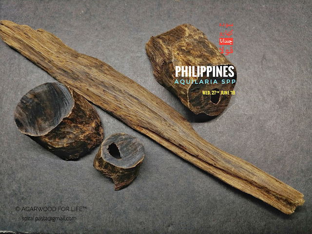 Sinking solid Agarwood that suits for burn as incense or as for carving and making beads which is bracelet and rosary of Agarwood.