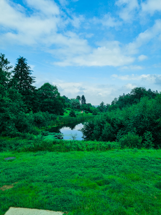 Bedgebury pinetum, Bedgebury with kids, family days out in Kent