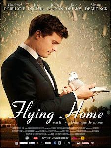 Assistir Voando Para Casa Dublado 2015 Online