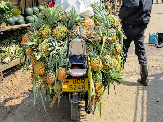 Pineapples on a motorcycle in Uganda