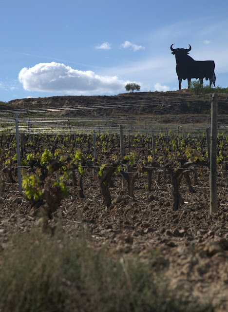 The Four Black Bulls of the Spanish Wine Apocalypse: Severe Weather Hits Numerous Spanish Wine Regions Causing Potentially Catastrophic Losses in Several Regions