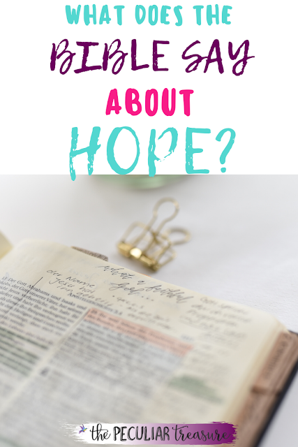The Bible says that Christians should hope in the Lord. What is true hope and what does the Bible say about the hope of the Lord? Learn about the hope the Lord gives believers today.