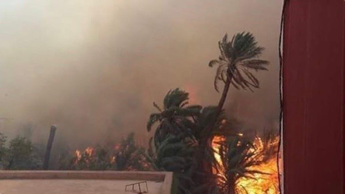ياربي السلامة.. ألسنة حريق مهول تلتهم العشرات من أشجار النخيل وقطعان المواشي بواحة تيغمرت بكلميم