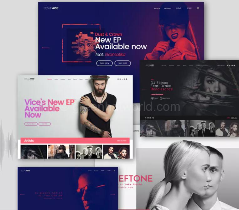Best Music and Artist WordPress Theme