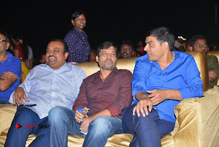 Nenu Local Audio Launch Stills  0229.JPG