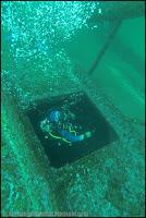 Bahia Inglesa -Chili- Bahia Mako diving