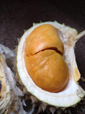 adik nak buah hijau ada duri, buah durian,musang king