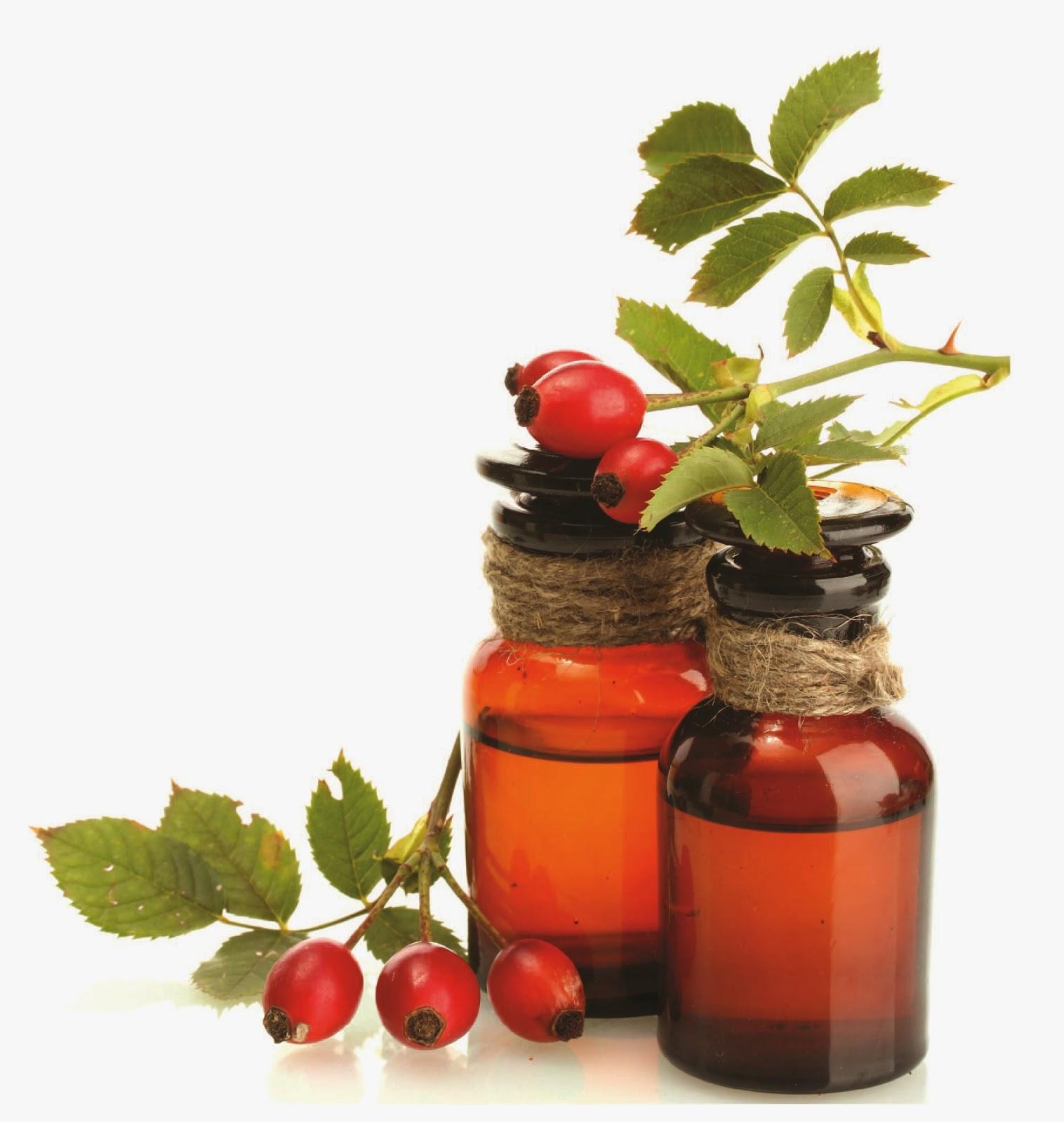 Rosehip Oil Cara Menghilangkan Bekas Jerawat: The Make-up Junkie: Skin Care Routine 2015 (plus Skin Care