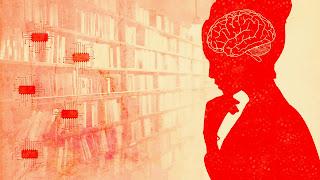 Brain of women