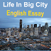 Life In A Big City English Easy ESSAY