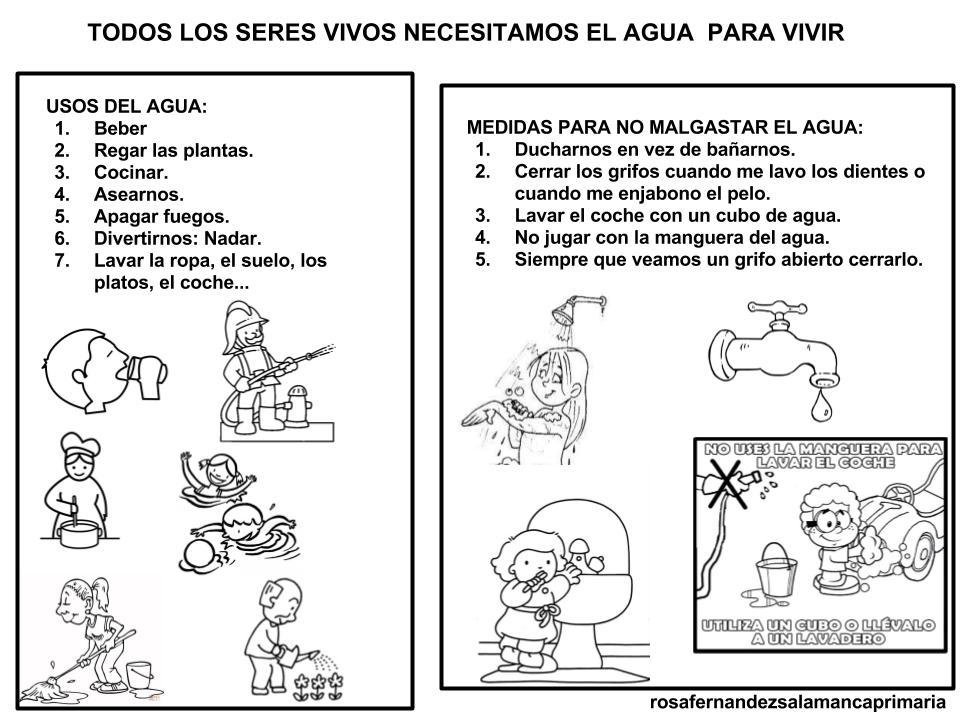 Maestra de Primaria: Uso del agua y medidas para no malgastarla.