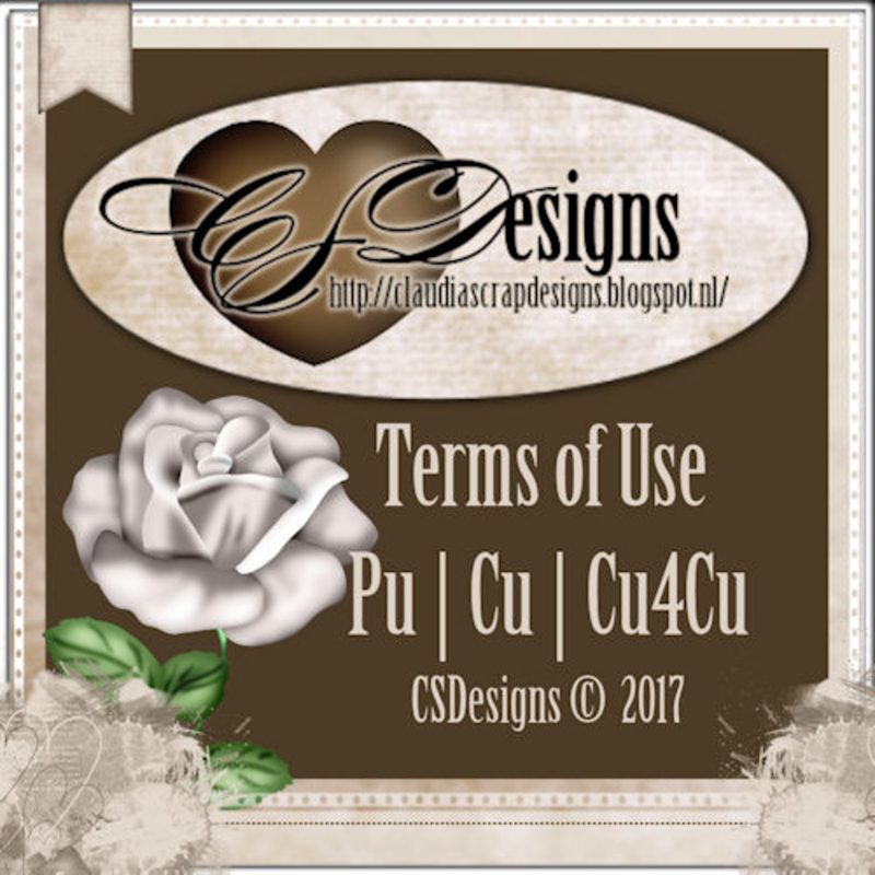 CSD Terms of USE