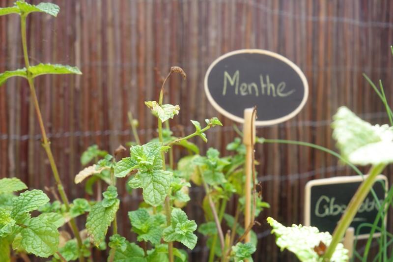 DECO : Ma terrasse, coté jardin. / www.by-laura.fr