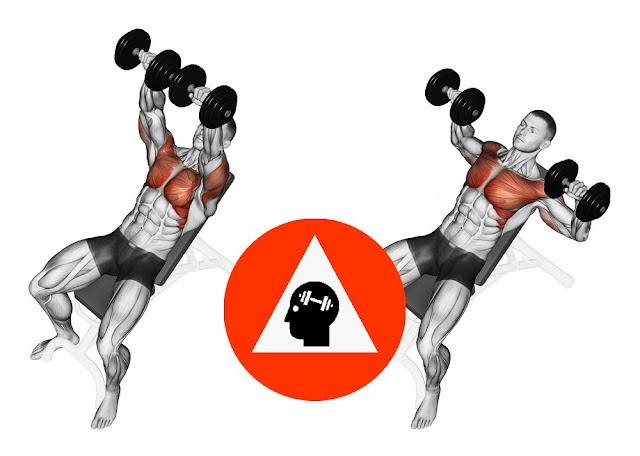 musculation exercice développé haltère incliné