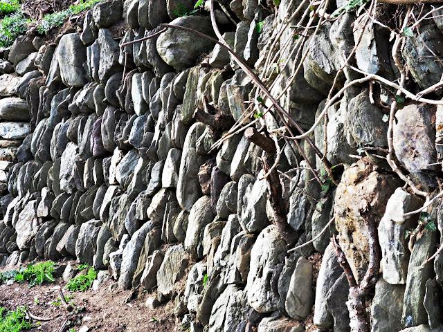 Old Cornwall wall, Looe