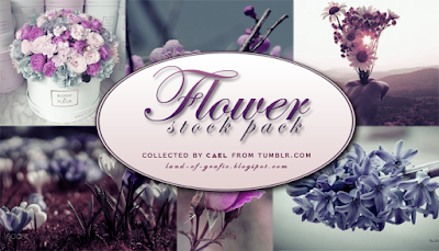 http://herocael.deviantart.com/art/Flower-stocks-pack-by-Cael-670237737?ga_submit_new=10%3A1490091379