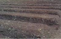 pengolahan tanah, cara menanam tanaman, budidaya tanaman, jual alat pertanian, toko pertanian, toko online, lmga agro