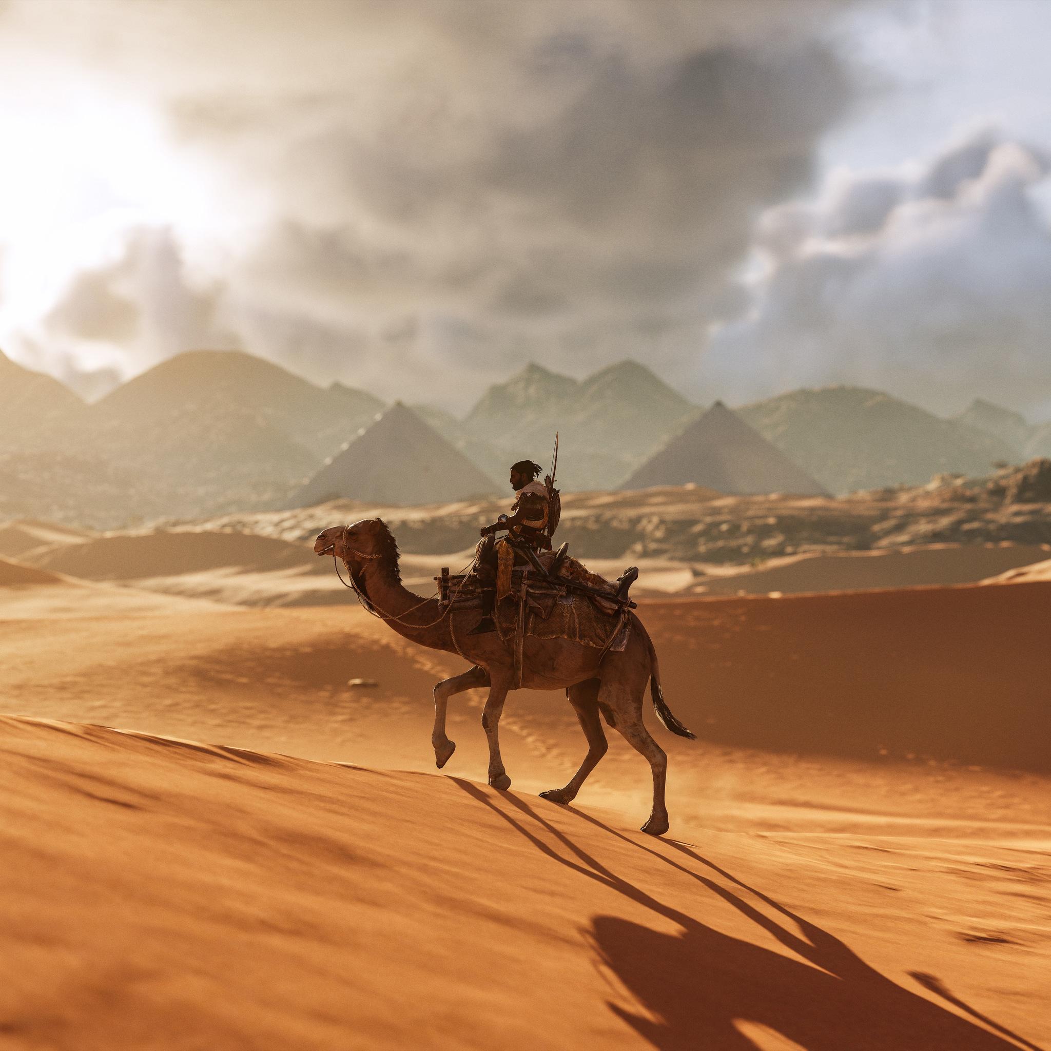 Camel Assassins Creed Origins