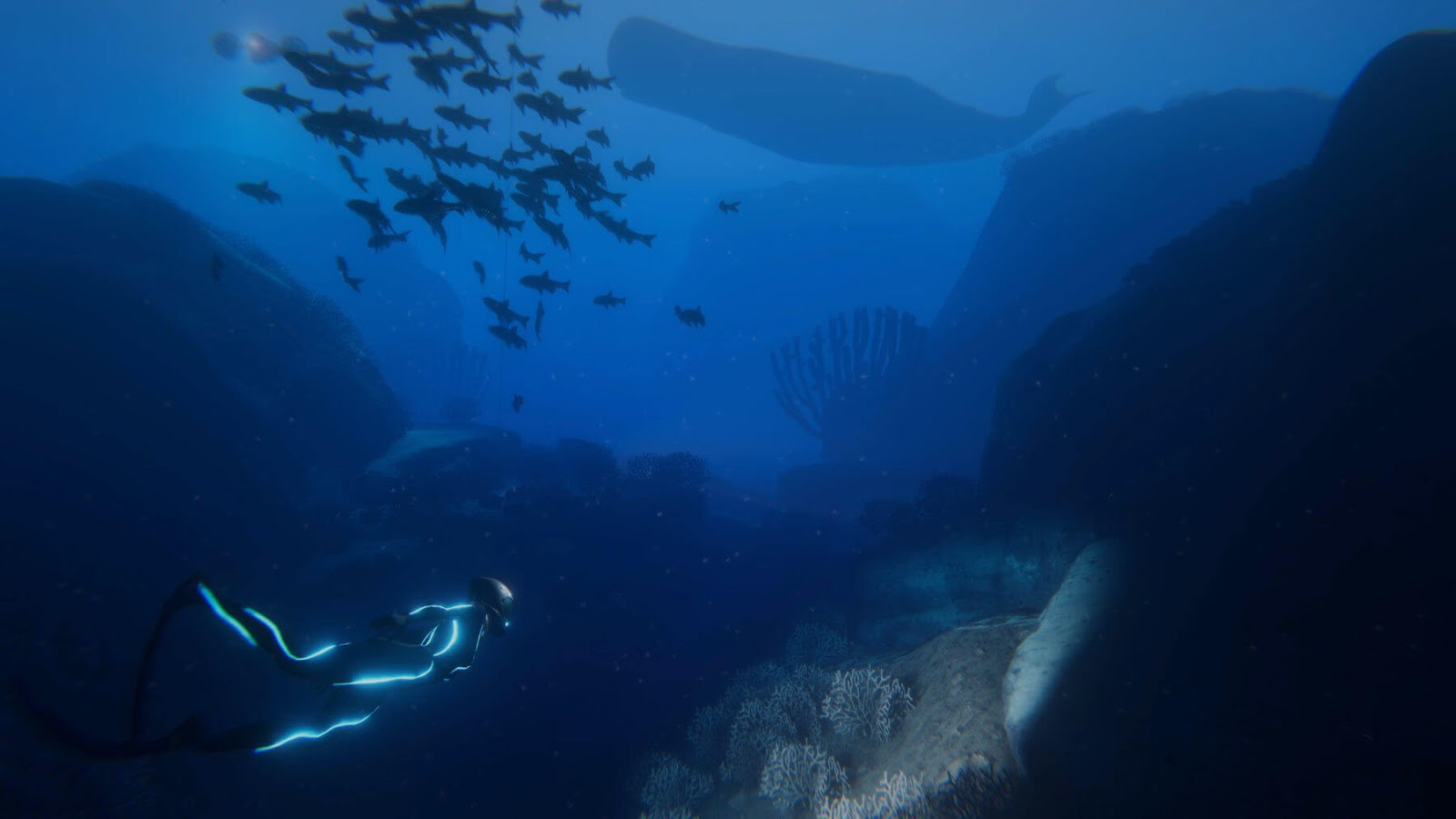 'Beyond Blue' Takes Players To The Bottom OF The Sea