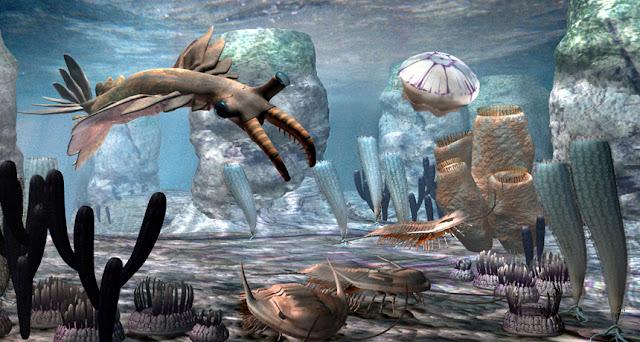حيوانات العصر الكمبري
