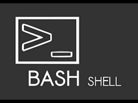 how to make a bash script in linux