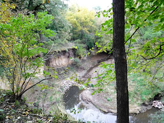 a deep ravine at Ravine Park in Sioux City