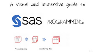 The Simplest Guide™ to SAS Programming*SAS Base*SAS Advanced