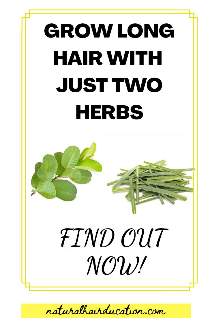 Guava and lemongrass tea for hair growth