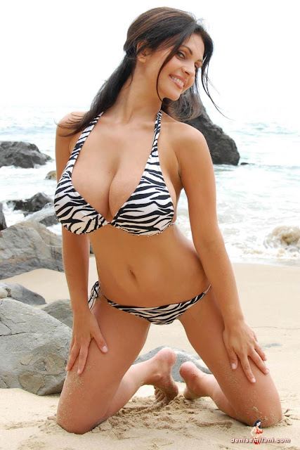 Denise Milani Beach Zebra HD Sexy Photoshoot Hot Photo 32