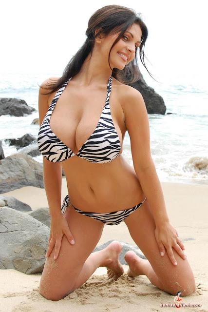 Denise Milani Beach Zebra HD Sexy Photoshoot Hot Photo 32
