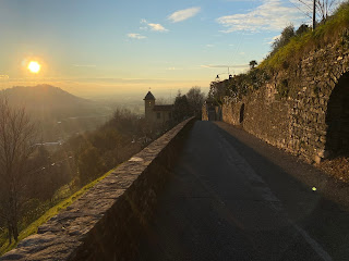 A wall on Via Fontana in Bergamo where many of the photos of sedum were taken.