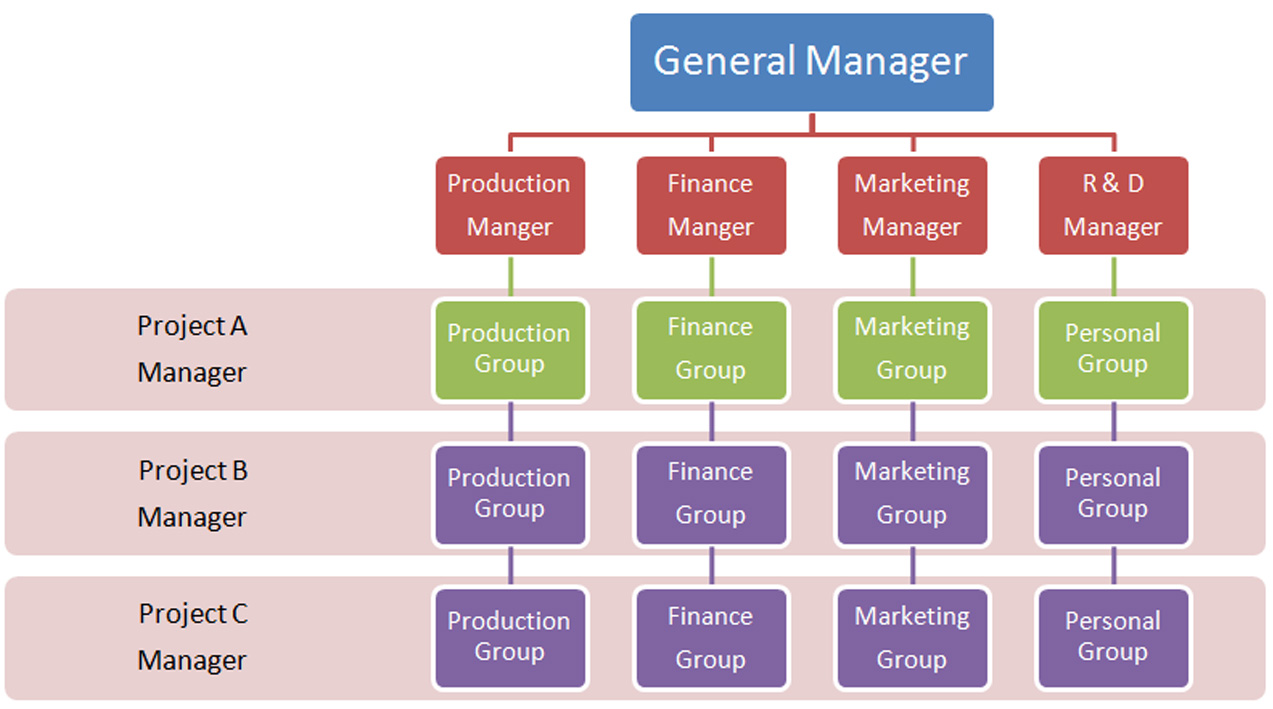 mcdonalds geographical departmentalization The mcdonald's executive organisational department areas are as follows: at the  top are the chairman and chief executive officer, and the chief operating officer.
