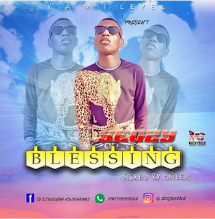 DOWNLOAD MP3 : SEGZY -- BLESSING
