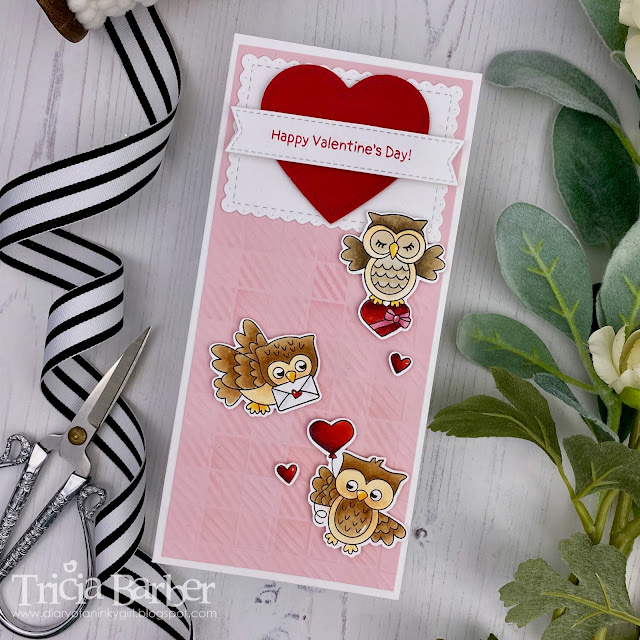 Valentine's Day Card by Guest Designer Tricia Barber | Love Owl-ways Stamp Set by Newton's Nook Designs #newtonsnook