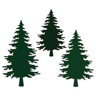Pine Trees Dies