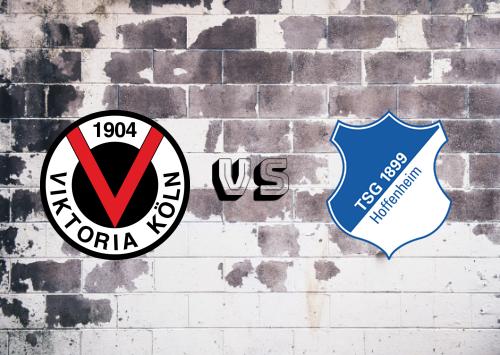 Viktoria Colonia vs 1899 Hoffenheim  Resumen