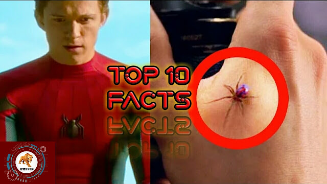 10 Facts you didn't know about Spider Man