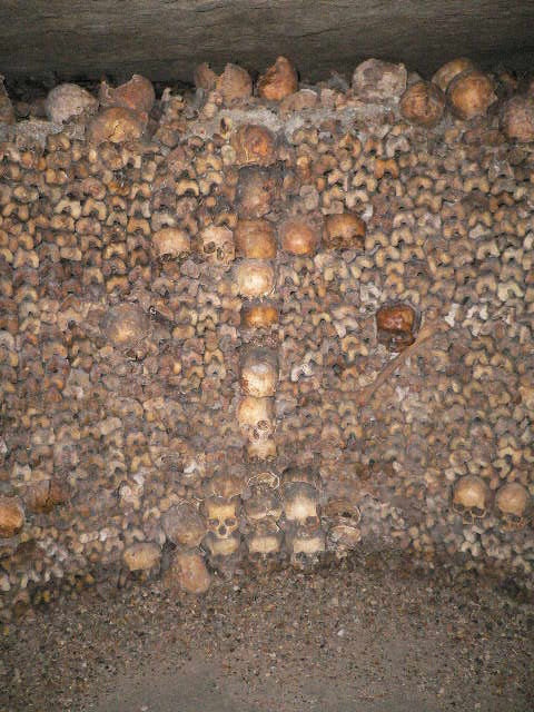 Happy New Year 3d Wallpaper Paris Catacombs Free Download Wallpaper