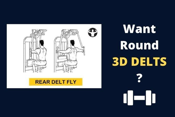 Rear Delt Fly: Secret to 3D Shoulders