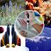 Dampak Pengembangan Bioteknologi