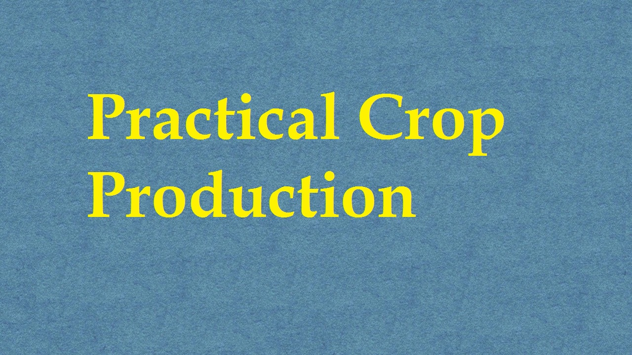 Practical Crop Production ICAR E course Free PDF Book Download e krishi shiksha