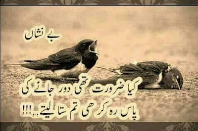 Poetry | Urdu  Poetry | Urdu Sad Poetry | Sad shayari | Poetry Pics | Poetry Images | Poetry With Pics - Daily Short Quotes,Urdu poetry download, Urdu poetry romantic, Urdu poetry for teachers, Urdu poetry on eyes, Urdu poetry about life, Urdu poetry about love, Urdu poetry Allama Iqbal, Urdu poetry about friends, Urdu poetry about death, Urdu poetry about mother, Urdu poetry about education, Urdu poetry best, Urdu poetry bewafa