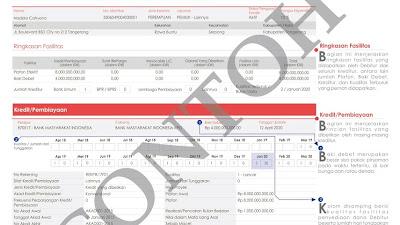 Cara Membaca Sistem Layanan Informasi Debitur (SLIK)