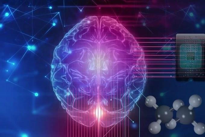 Modelos de Rede Neural do Futuro – A Chave para Desbloquear Como Nosso Cérebro Funciona