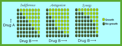 Concept_of_Antimicrobial_Synergy