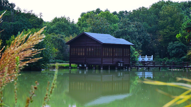Photography: The cabin by the lake