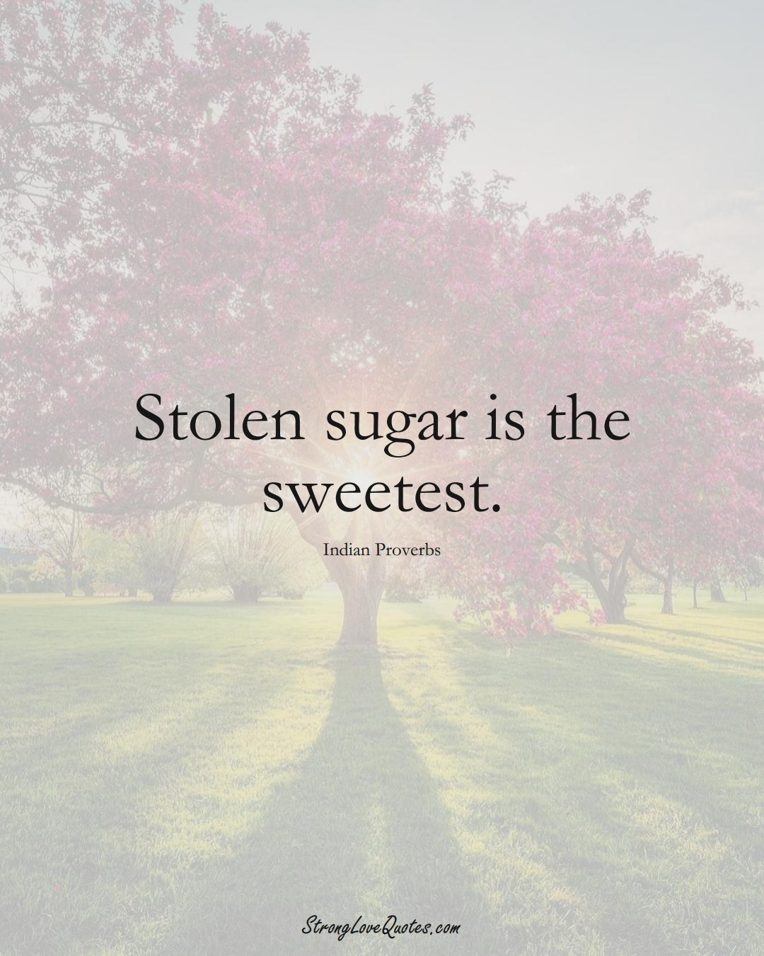 Stolen sugar is the sweetest. (Indian Sayings);  #AsianSayings