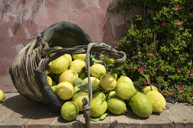 Limoni Monachello-Riserva naturale della Timpa