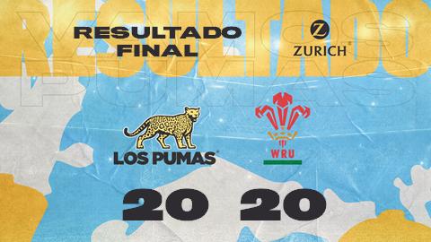 Los Pumas empataron con Gales en 20 puntos