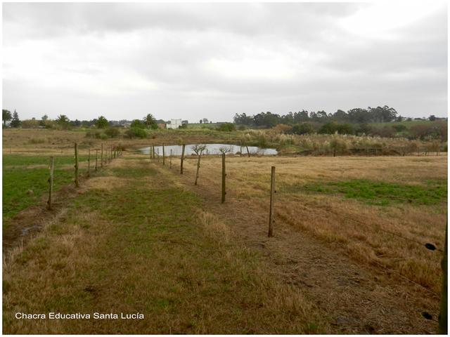 Sequía - Chacra Educativa Santa Lucía